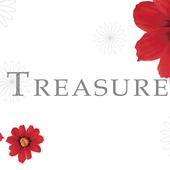 TREASURE(トレジャー) icon