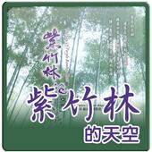 紫竹林的天空-icoon