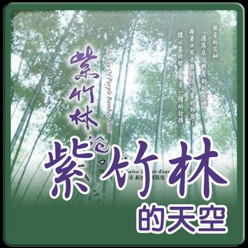 紫竹林的天空-poster