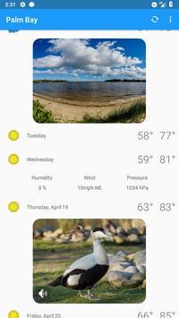 weather in palm bay fl
