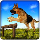 Dog Run Adventure Stunt Racing Simulator 3D 2017 icon