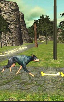 Dog Run Adventure Stunt Racing Simulator 3D 2017 screenshot 23