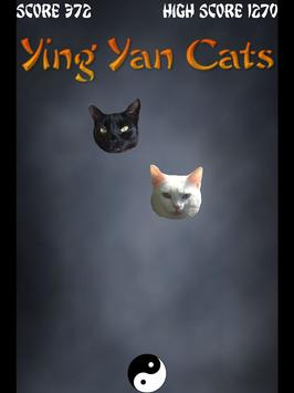 Yin Yang Cats (Unreleased) poster