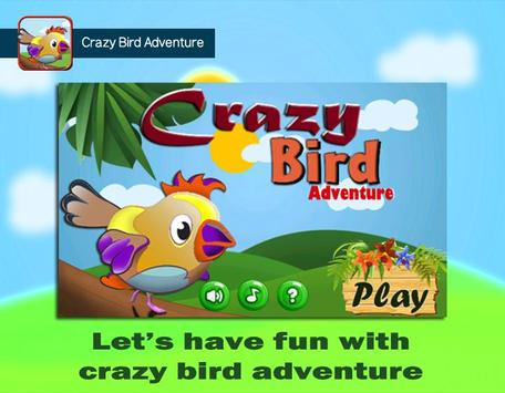 Crazy Bird Adventure poster