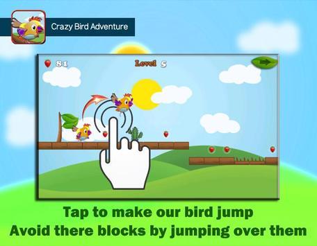 Crazy Bird Adventure screenshot 2