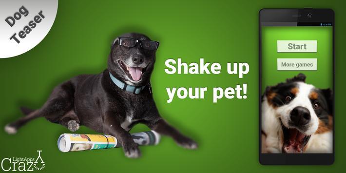 Dog Teaser poster