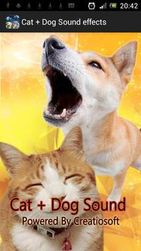 Cat + Dog Sound effects poster
