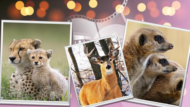 Wild Safari Quick Snapshot 3D screenshot 2