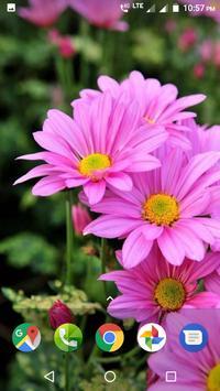 Flower Wallpaper screenshot 17
