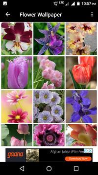 Flower Wallpaper screenshot 4