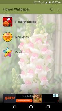 Flower Wallpaper screenshot 8