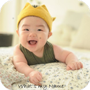 Hindu Baby Names With Meanings APK