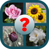 Guess the Flower Type icon