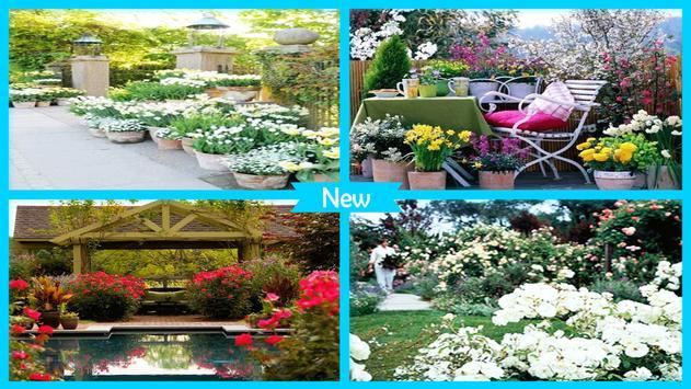 Best DIY Grow Patio Roses poster
