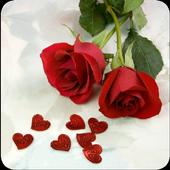 Fondos de pantalla de Rosas icon