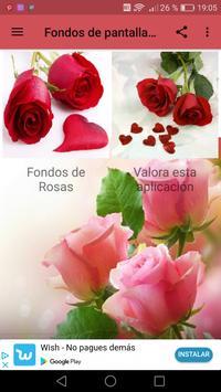 Fondos de pantalla de Rosas screenshot 2
