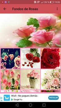 Fondos de pantalla de Rosas screenshot 3