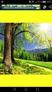 Imagenes de Primavera Fondos screenshot 6