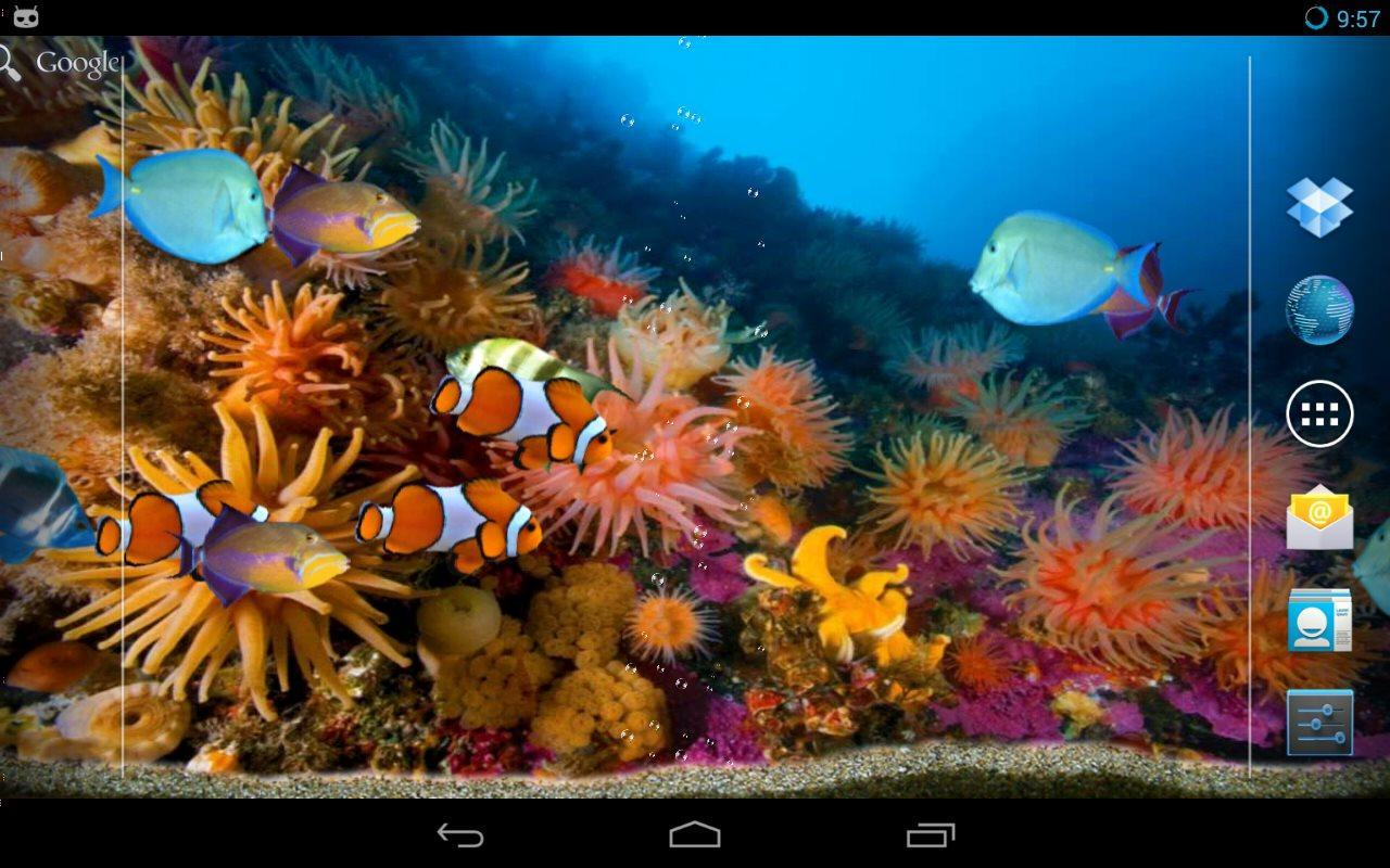 Pesci tropicali acquario for android apk download for Sfondi pesci tropicali