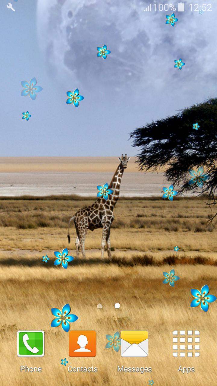Safari Live Wallpapers for Android - APK Download