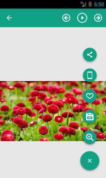 HD Image screenshot 4
