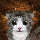 Cu Cat Maze Runner APK