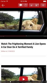 Trending Hot - Amazing videos apk screenshot
