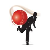 Cricket Ground Fast Line icon