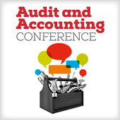 Audit and Accounting icon