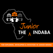 The Junior Indaba icon