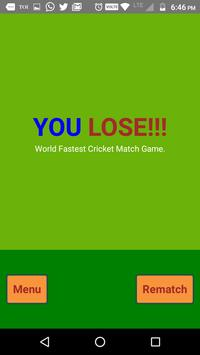 Hit Cricket screenshot 6