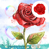 Colorful Love Rose Wallpaper icon