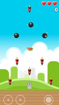 Fruit And Rabbit apk screenshot