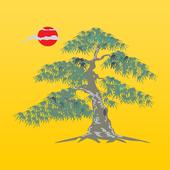 Sam5.ru icon