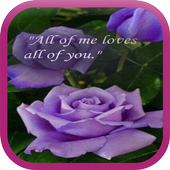 Cute Love Quotes WP icon