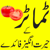 Tomato benefits in urdu icon