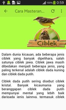 Kicau Ciblek screenshot 7