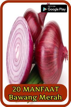 20 Manfaat Bawang Merah poster