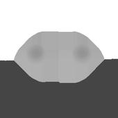 Bouncewalls icon