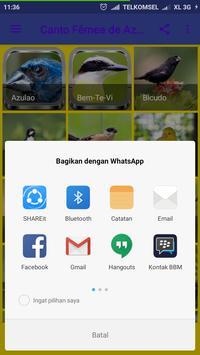 Canto De Azulão Mp3 apk screenshot