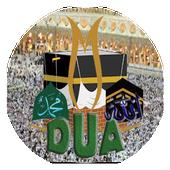 Dualar icon