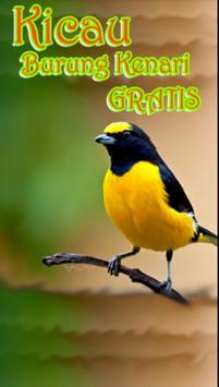 Kicau Burung Kenari Gratis poster