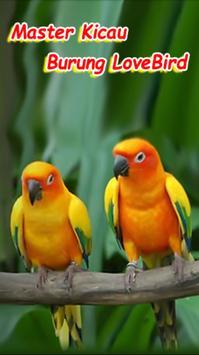 Master Kicau Lovebirds poster
