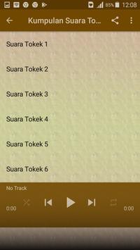 Suara Tokek Offline screenshot 1