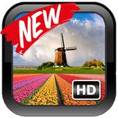 Amazing Dutch Wallpaper icon