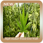 High maker Weed Live Wallpaper icon