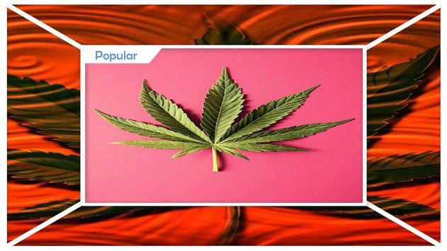 High maker Weed Live Wallpaper screenshot 1