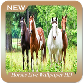 Horses Live Wallpaper HD icon