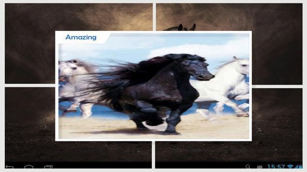 Horses Live Wallpaper HD screenshot 2