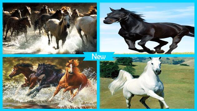 Horses Live Wallpaper HD screenshot 3